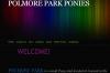 Polmore Park Shetland Stud